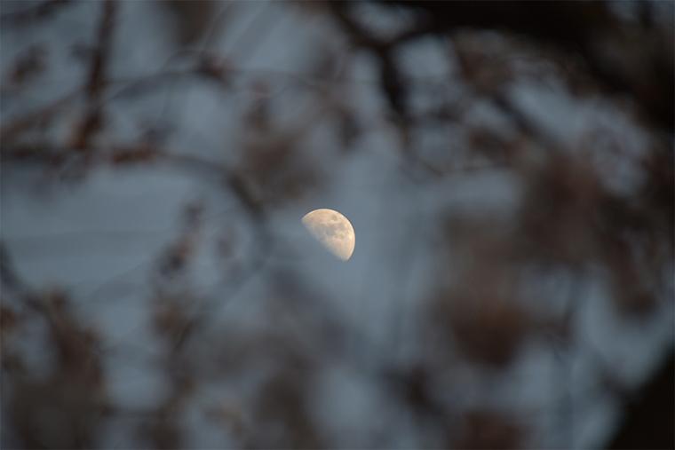 隙間から覗く月