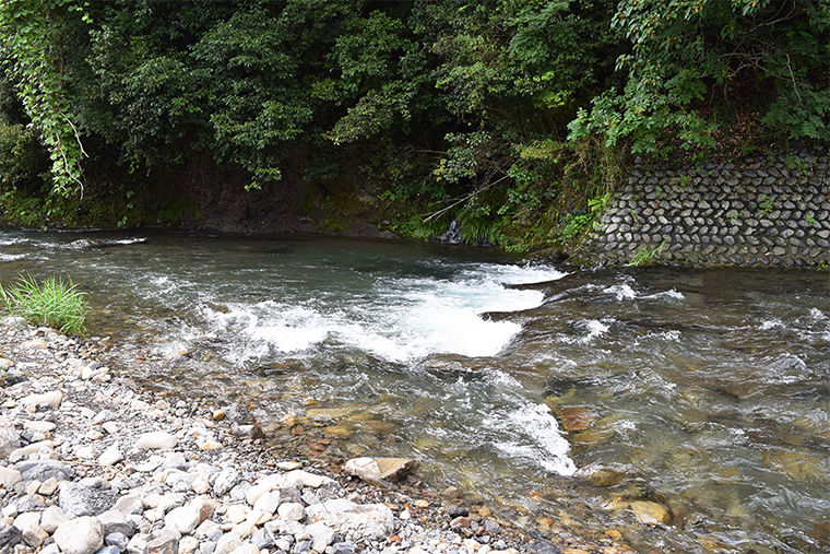 勢いよく流れる川